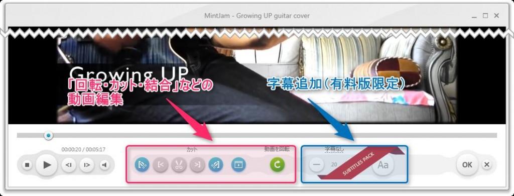 s-Free Video Converter_使い方2