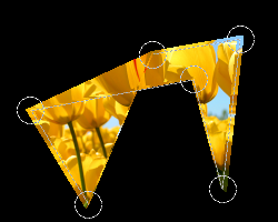 任意多角形カット